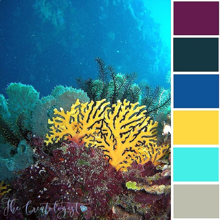 Color Inspiration | Yellow Coral